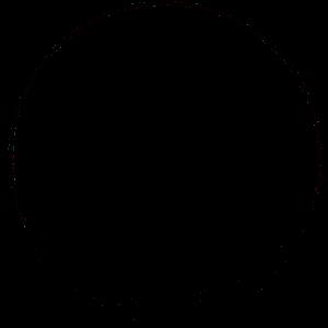 strauss-fliege_muenchen_logo_d2207c6d1c